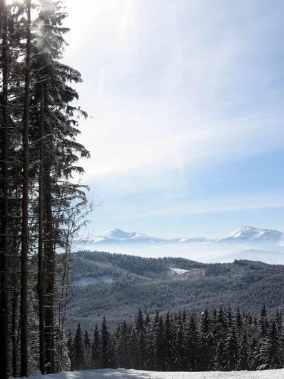 Карпаты - зима. Вид на горы.. Проект 'Зимние Каникулы' - фото.: http://traveller.com.ua/photogallery/winter_holiday/vidnagori.htm