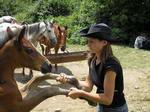 Знакомство с лошадьми. Начало конного похода по Крыму