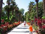 Ботанический сад, Ялта. Поездка в один из дней конного похода по Крыму.