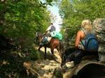 Выезд в конный поход по Крыму.
