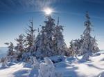 Восхождение на Говерлу. Зимняя сказка Карпат